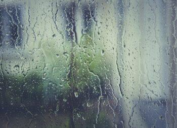 Reparación de humedades. Alarga la vida de tus ventanas